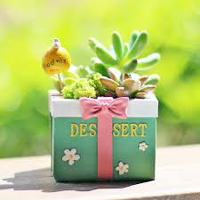 creative succulents flowerpot cartoon gifts box kawaii z mini plam succulents planter flower pot garden home decoration succulents flowerpot flower pot