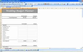 Wedding Guest List Spreadsheet Haisume Worksheet And Manager   Tuplee