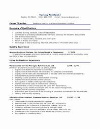 Cna Resume Summary Examples Resume Summary Example Fresh Cna Resume Template Professional 4
