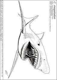 24 Megalodon Shark Coloring Pages Megalodon Coloring Pages