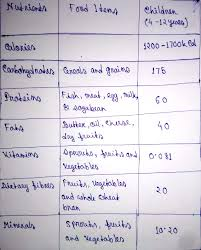 Dry Fruits Vitamins Chart Prepare A Diet Chart Of A 12 Year Old Child Pls Brainly In
