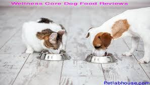 Wellness Core Puppy Feeding Chart Top 7 Wellness Core Dog Food Reviews Advice