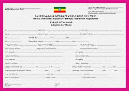 Adoption Birth Plan Template Crvs Birth Marriage And Death Registration In Ethiopia