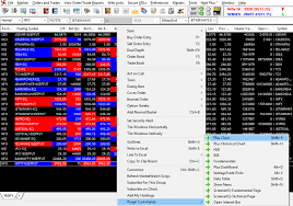 Intraday Charting Software How To Check Intraday Charts On Nest Trader Nest Plus Chart