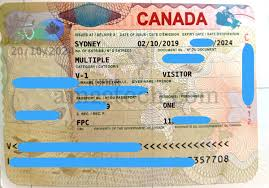 how to apply canada visitor visa with