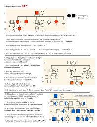 Pedigree Chart Worksheet With Answer Key Answer Key