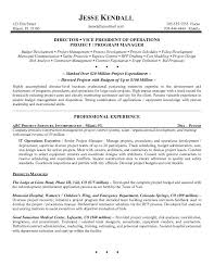 a great sample of an executive resume example of executive resume