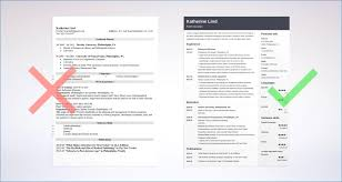 Best Librarian Resume Sample Resume Layout Com