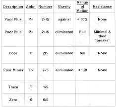 Mmt Chart Mmt Grades Chart Related Keywords
