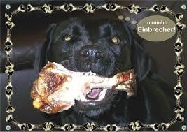 Hundewarnschild Lustig Mit Knochenrahmen Vom Eigenen Hund Tolle