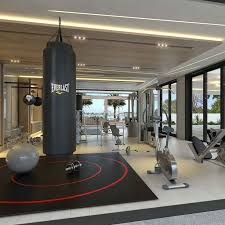 Home Gym Modern On Inside Design Gingembre Co 18