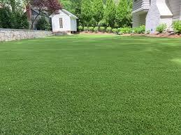 artificial grass in bethesda md golf