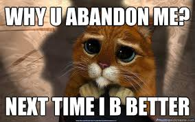 Why u abandon me? Next time I b better - Sad cat - quickmeme via Relatably.com