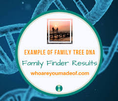 Example Of Family Tree Dna Family Finder Results - Who Are You Made Of?