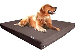 extra large pet beds. Fine Large Amazoncom  Dogbed4less Extra Large Orthopedic Cooling Memory Foam Dog Bed  With Durable Denim Cover Waterproof Liner And Pet Case  To Beds R