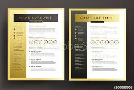 Expert Cv Resume Template In Black And Gold Colors