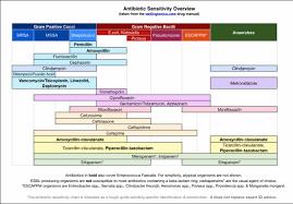 Gram Positive Antibiotics Chart Great Simplified Chart On Antibiotic Sensitivity Overview