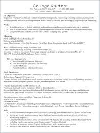 Tech Resume Sample Writing Online No Time Dean Assistant Resume An ...