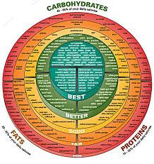 Macronutrient Chart Macronutrients Holistic Health Strength
