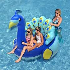 really cool pool floats. Fine Cool Bird Floats Are The Latest Rage And We Canu0027t Get Enough Of Them On Our  Instagram Feed These Giant Feathered Friends Great In Pools Because So Many For Really Cool Pool Floats