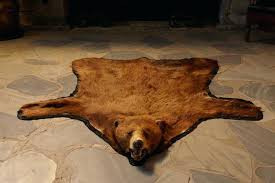 bear skin blanket brown and down bear skin rugs without head