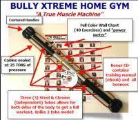 Bullworker X5 Wall Chart Bullworker