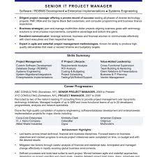 Fantastic Project Management Resume Buzzwords Ideas Entry Level