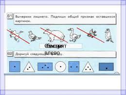 Урок информатики класс Контрольная работа № птицы белые Смотрят влево