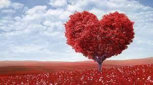Love Background Free