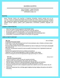 Example Of A Business Resume Magnificent Resume For Business Analyst Resume Badak