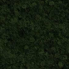 seamless dark grass texture. Seamless Dark Grass Texture