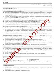 example of a written cv application executive cv examples the cv store