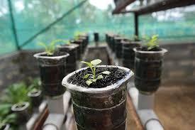 diy hydroponic herb garden