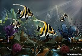 coral reef fish drawing.  Fish Create A Colorful Coral Reef With Exotic Fish Final Image In Drawing L