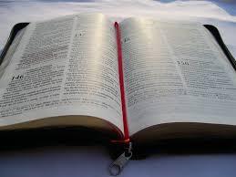 Resultado de imagem para fotos da bíblia aberta