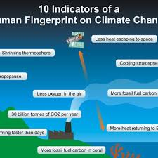 Flow Chart Of Causes Of Global Warming How Do We Know Humans Are Causing Global Warming Vox