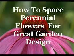 Small Picture How To Space Perennial Flowers For Great Garden Design YouTube