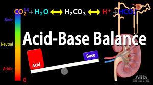 Stable Blood Gas Interpretation Chart Acid Base Balance Animation