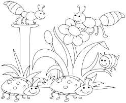 Free Spring Coloring Pages Spring Flowers Coloring Pages For Adults