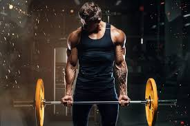 can you gain muscle and lose fat at the