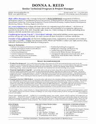 Agile Product Owner Resume Examples Sample Resume For Senior Manager Inspirational It Technical Project 18
