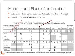 Articulatory Phonetics Chart The Consonants Fricatives Ppt Video Online Download