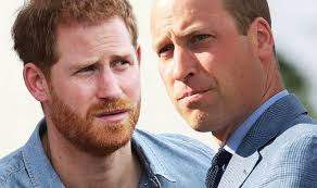 Modest' Prince William makes subtle dig at 'immature' brother Prince Harry,  expert claims | Express.co.uk