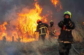 Resultado de imagen de Incendios forestales.