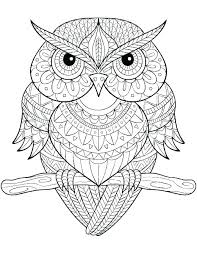 Flower Mandala Coloring Pages Betterfor