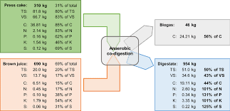 m balance for anaerobic co digestion