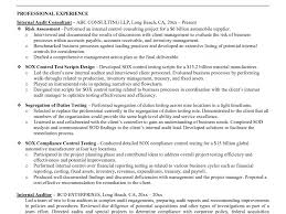 Auditor Resume Sample Resume Internalit Sample Samples Velvet Jobsitor Example Bank 100