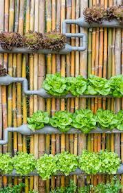diy vertical gardens for small spaces