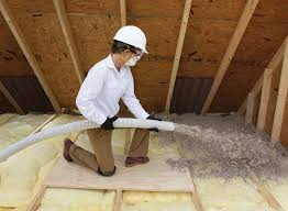 blown in cellulose insulation. Wonderful Blown Cellulose Is Generally Made From One Of These Boric Acid Sodium Borate  Or Ammonium Sulfate Would Be Used For This As They Are Considered To Safe If It  For Blown In Insulation