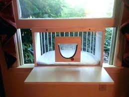 full size of diy cat window perch no s cool large size of and snooze mounted